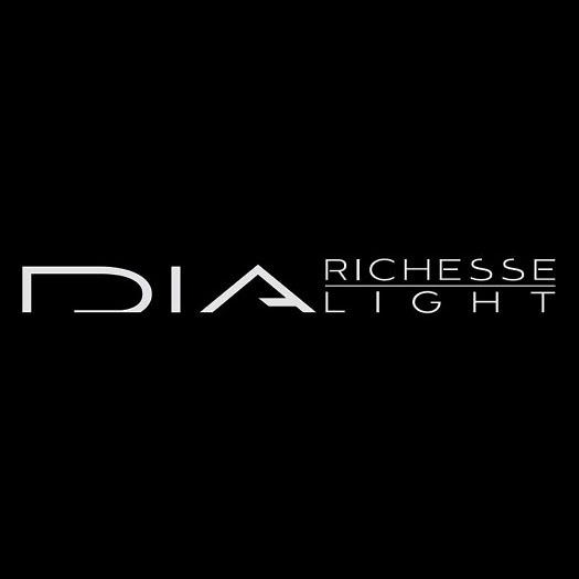 dia richesse light vero beach hair salon